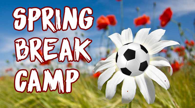 spring_break-camp